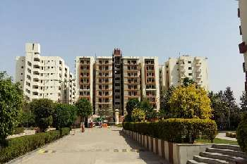 2 BHK 800 Sq.ft. Residential Apartment for Sale in Alwar Bypass Road, Bhiwadi
