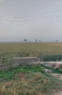 Farm Land for sale in Rohtak | Buy/Sell Agricultural Land in