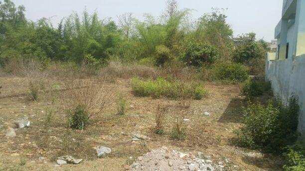 442 Sq.ft. Residential Plot for Sale in Gangashahar, Bikaner