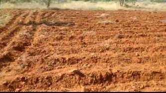 174 Acre Farm Land for Sale in Melapalayam, Tirunelveli