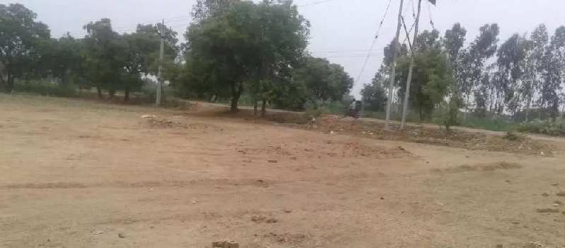 9 Bigha Residential Plot for Sale in Anupshahr, Bulandshahr