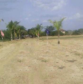 1200 Sq.ft. Residential Plot for Sale in Vembakkam, Kanchipuram