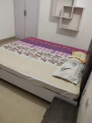 1 BHK 2000 Sq.ft. Residential Apartment for Rent in Gomti Nagar, Lucknow