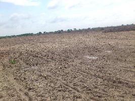 3 BHK Flat for Sale in Sector 4, Rewari