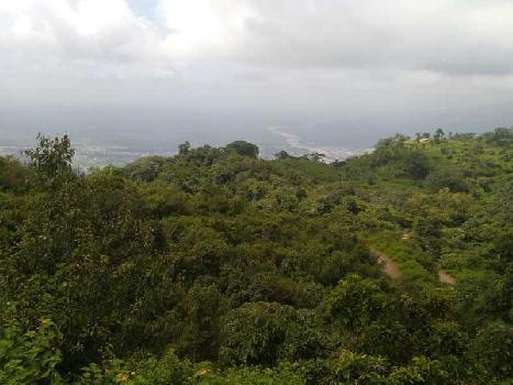 6000 Sq. Yards Farm Land for Sale in Neelkanth Road, Rishikesh