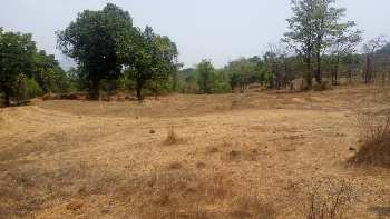 539 Sq. Yards Residential Plot for Sale in Sector 19 Rewari