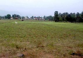 48000 Sq.ft. Residential Plot for Sale in Talasari, Palghar