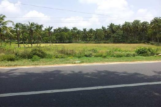 1 Ares Commercial Land for Sale in Kozhinjampara, Palakkad