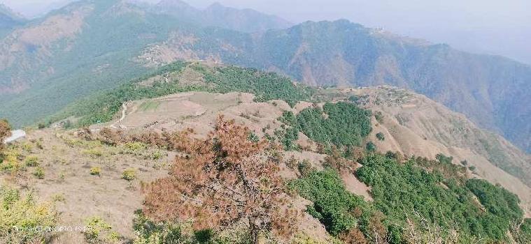 395 Acre Farm Land for Sale in Mussoorie, Dehradun