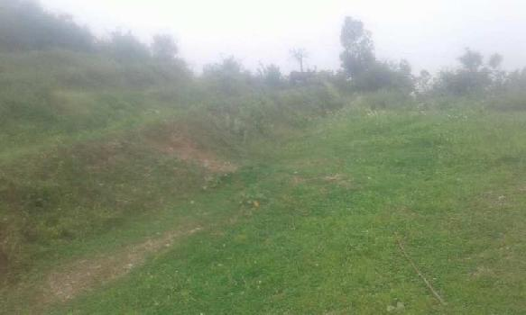 6 Bigha Farm Land for Sale in Neelkanth Road, Rishikesh