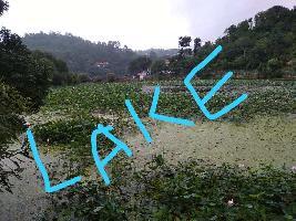 1 Bigha Farm Land for Sale in Bhimtal, Nainital