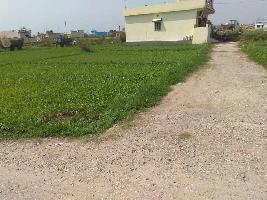 100 Sq. Yards Residential Plot for Sale in Shyampur, Rishikesh