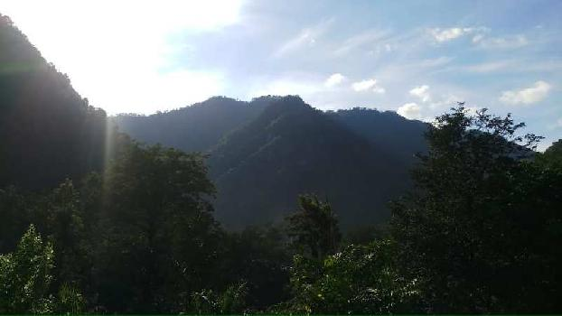 250 Acre Farm Land for Sale in Yamkeshwar, Pauri Garhwal