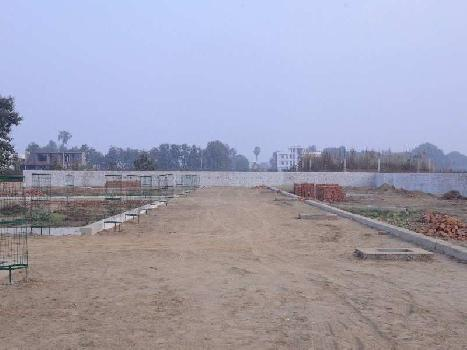 158 Sq. Yards Commercial Land for Sale in Pinjore, Panchkula