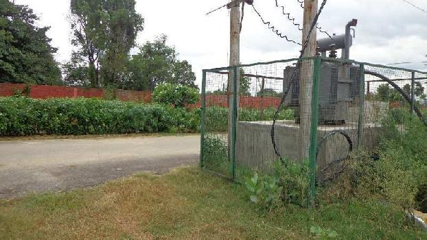 164 Sq. Yards Commercial Land for Sale in Pinjore, Panchkula