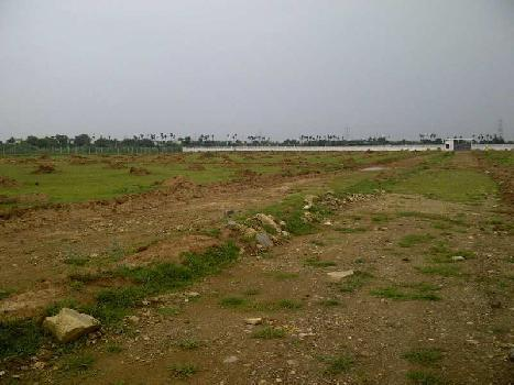 168 Sq. Yards Commercial Land for Sale in Pinjore, Panchkula