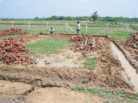 176 Sq. Yards Commercial Land for Sale in Pinjore, Panchkula