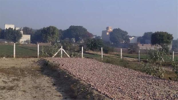 180 Sq. Yards Commercial Land for Sale in Pinjore, Panchkula