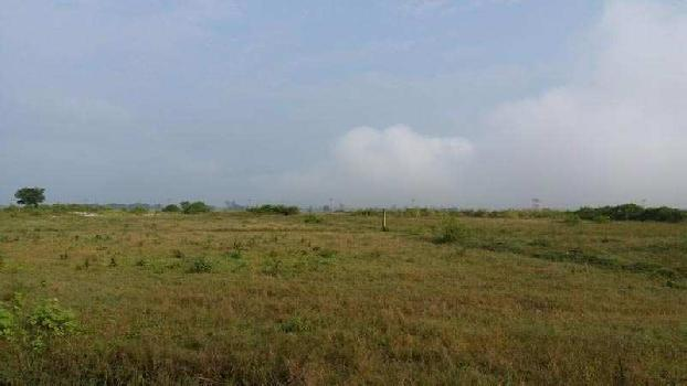184 Sq. Yards Commercial Land for Sale in Pinjore, Panchkula