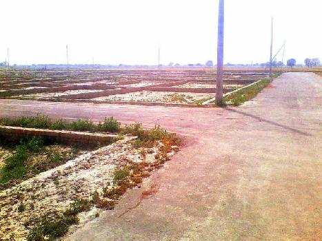 190 Sq. Yards Commercial Land for Sale in Pinjore, Panchkula