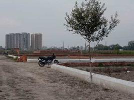 800 Sq.ft. Residential Plot for Sale in Sarojini Nagar