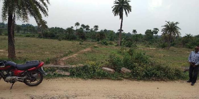 250 Dismil Residential Plot for Sale in Gobindpur, Dhanbad