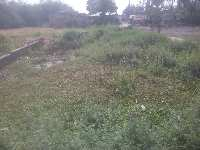 1020 Sq.ft. Residential Plot for Sale in Motihari