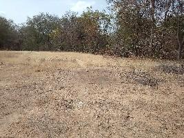 12 Acre Farm Land for Sale in Lepakshi, Anantapur