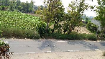32 Bigha Farm Land for Sale in Garh Mukheshwar, Ghaziabad