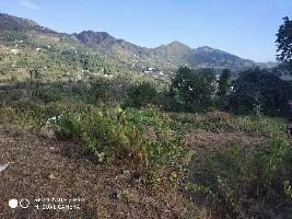 4320 Sq.ft. Residential Plot for Sale in Bhimtal, Nainital