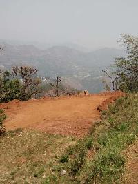 198720 Sq.ft. Residential Plot for Sale in Bhimtal, Nainital