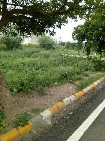 264 Sq. Yards Residential Plot for Sale in Sector 9 Bahadurgarh