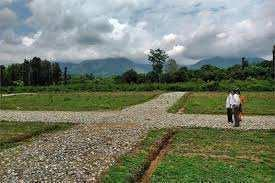 350 Bigha Farm Land for Sale in Mohangarh, Jaisalmer