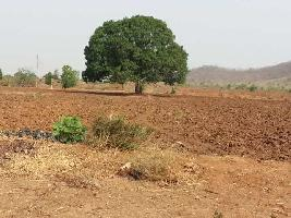 Farm Land for sale in Nizamabad | Buy/Sell Agricultural Land