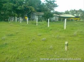 Residential Plot for Sale in Sector 44, Noida - 300 Sq. Meter