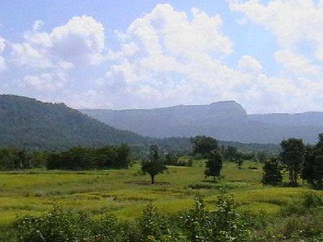 60 Acre Industrial Land for Sale in Chakan, Pune