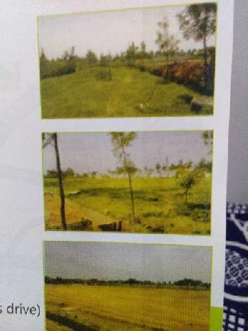 1500 Sq.ft. Residential Plot for Sale in Bagalur Road, Hosur