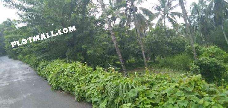 151 Cent Commercial Land for Sale in Pookkottur, Malappuram