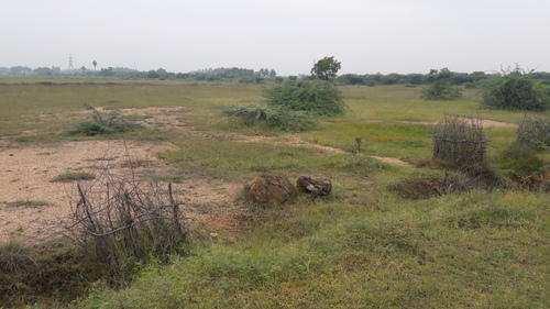 135 Acre Farm Land for Sale in Dabaspete, Bangalore