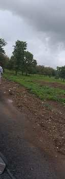 120 Guntha Farm Land for Sale in Padagha, Thane
