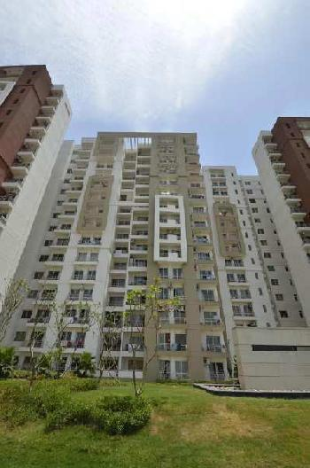 4 BHK 2794 Sq.ft. Residential Apartment for Rent in Sector 110 Noida