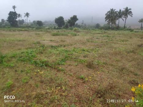 10 Acre Farm Land for Sale in Kanakapura Road, Bangalore