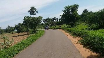 326700 Sq.ft. Farm Land for Sale in Abu Road, Sirohi