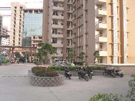 2 BHK Flat for Rent in Sector 135, Noida