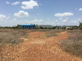 1 Acre Residential Plot for Sale in Trichy Road, Dindigul