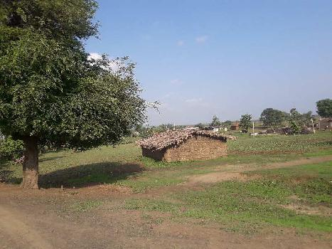 2 Acre Farm Land for Sale in Bilkisganj, Sehore