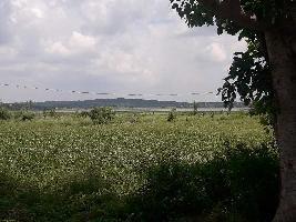 1 RK Farm House for Sale in Huzur, Bhopal