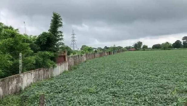 6 Acre Farm Land for Sale in Bhopal Naka, Sehore