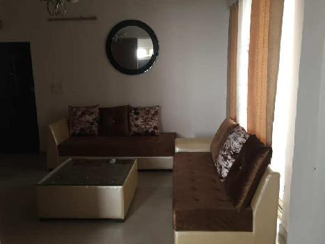 3 BHK 1600 Sq.ft. Residential Apartment for Rent in Sector 34 Noida