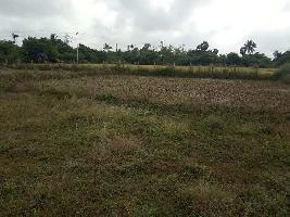 474804 Sq.ft. Farm Land for Sale in Tirupathur, Sivaganga
